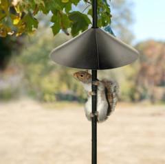 Wrap Around Squirrel Guard