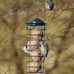 National Trust Upright Fat Ball Feeder - lifestyle