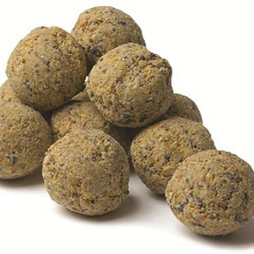 6 Suet Balls