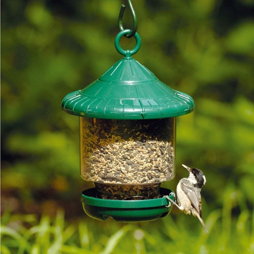 awesome clingers only feeder bird seed feeders bird feeders clingers only feeder bird seed feeders bird feeders 755
