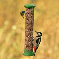 GardenBird Exclusive Classic Peanut Feeder - Medium