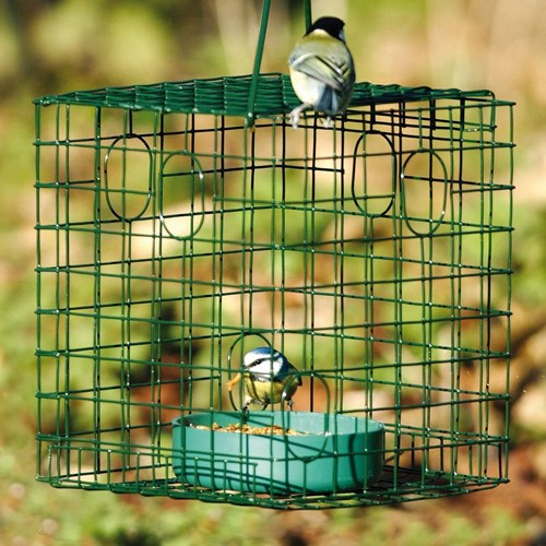 caged worm feeder live bird food bird feeders. Black Bedroom Furniture Sets. Home Design Ideas