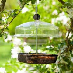 Chapelwood Open Mealworm and Seed Feeder