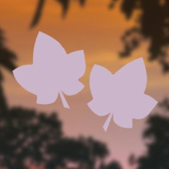 Maple Leaves - Birds Vision