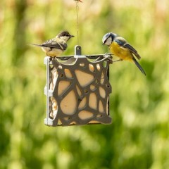 National Trust Anna Recycled Suet Cake Feeder