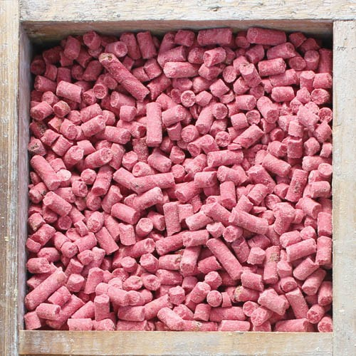 500g Pouch Berry Treat Pellets