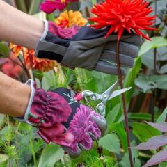 Burgon & Ball British Bloom Gardening Gloves
