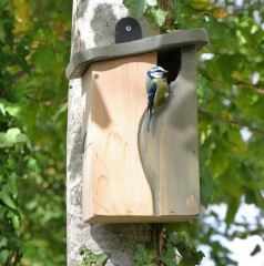Wildlife World Simon King Curve, Cavity Nest Box