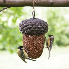 Fallen Fruits Acorn Peanut Feeder