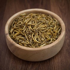 Dried Mealworm for Birds