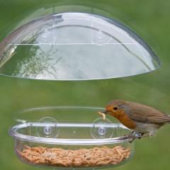 Jacobi Jayne I love Robins Window Feeder
