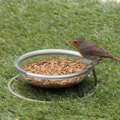 Jacobi Jayne I Love Robins Easy Clean Treat Dish