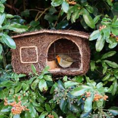 Wildlife World Simon King Cabin Nester