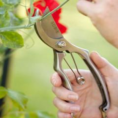 Burgon & Ball Sophie Conran Gardening Secateurs