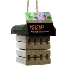 Tom Chambers Busy Bee House