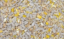 Ultiva Gold Premium Seed Mix